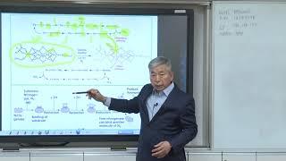 유기합성 및 생유기화학-15주차-2