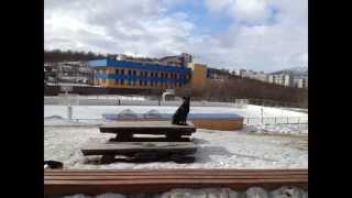 Мурманск с/к Долина уюта ( муз.клип-настроение ) Барабан видео :-)(, 2013-07-29T19:57:59.000Z)