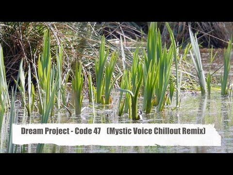 Dream Project - Code 47 (Mystic Voice Chillout Remix) from
