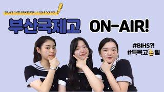 BIHS 아카이브를 소개합니다!✨  부산국제고등학교  …