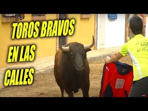 Crazy Funny BULLFIGHT BLOOPERS IN SPAIN 🤦♂️😜 - TOROS TV