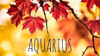 AQUARIUS NOVEMBER 2018 🦃🍁🍃 LOVE TAROT READING STAY PRESENT IN THE EYE OF CHAOS