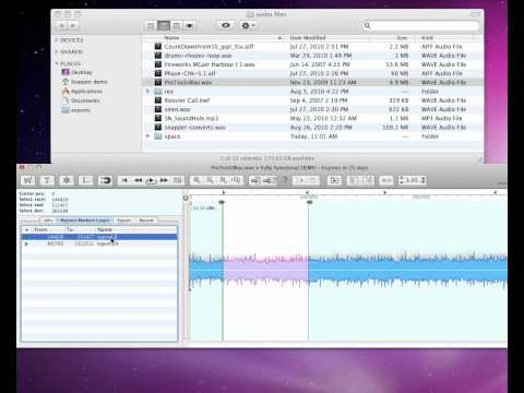 Audio Ease - Snapper - display and edit audio files directly in the