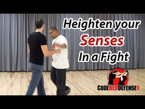 Heighten your Senses in a Street Altercation