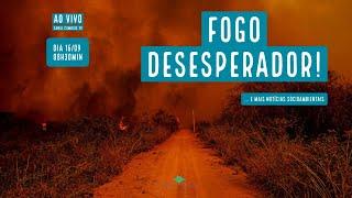 FOGO! -  VERDE MAR #67
