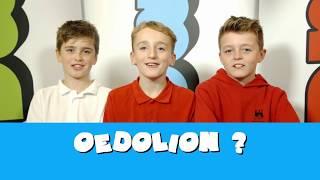 Ysgol Castell Nedd | Barn ni ar oedolion!