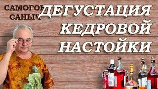 Настойка АЛТАЙСКАЯ КЕДРОВАЯ из пакетика - дегустация / Самогон Саныч