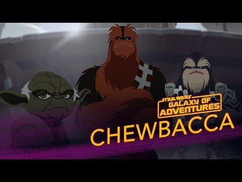 Chewbacca - Wookiee Warrior  | Star Wars Galaxy Of Adventures