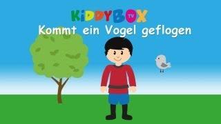 Kommt ein Vogel geflogen - Kinderlieder zum Mitsingen - (KIDDYBOX.TV) Karaoke Lyric Songtext