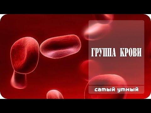 Королевская кровь-4 -