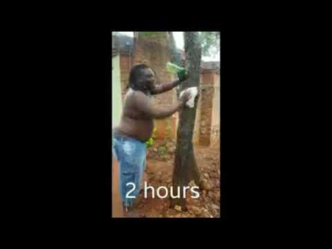 Sylent Nqo:  Quality Zim Mbanje