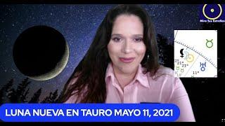 LUNA NUEVA EN TAURO  Las vacas gordas y la vacas flacas Mayo 11, 2021