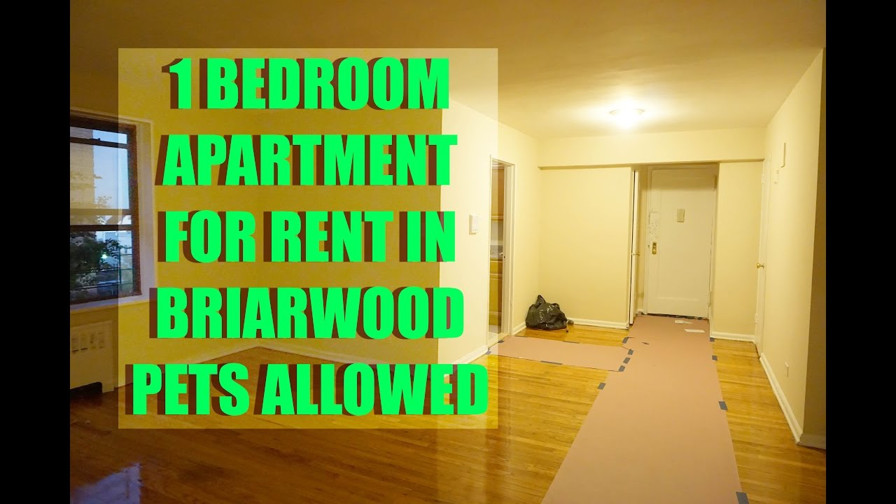 Pet friendly 1 bedroom apartment for rent in briarwood - One bedroom apartments in queens ...