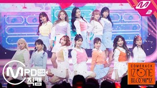 Download lagu [MPD직캠] 아이즈원 직캠 4K '해바라기(Sunflower)' (IZ*ONE FanCam) | @COMEBACK IZ*ONE BLOOM*IZ