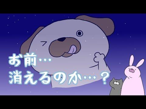 【お前…】ポロリッチ、夕日に消ゆ!!【消えるのか…?】