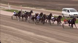 Vidéo de la course PMU PRIX WENSINK (DEFI DES TALENTS MERWAL)