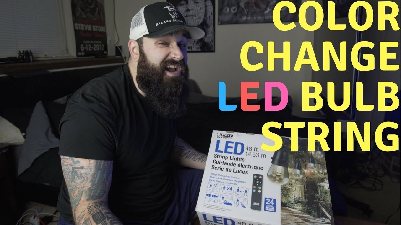 Feit Color Changing Led String Bulb Review Costco Buy