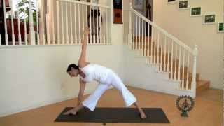 Yansyoga For Beginners1