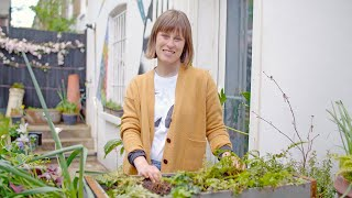 video: Four ways to make the most of a small garden
