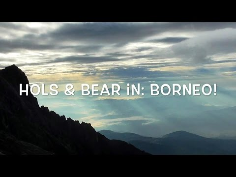 Hols & Bear's Travel Blog: Borneo!