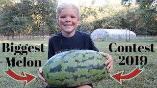 Biggest Watermelon Contest 2019