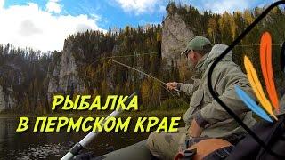 Продажа и покупка готового бизнеса в Пермском крае ...