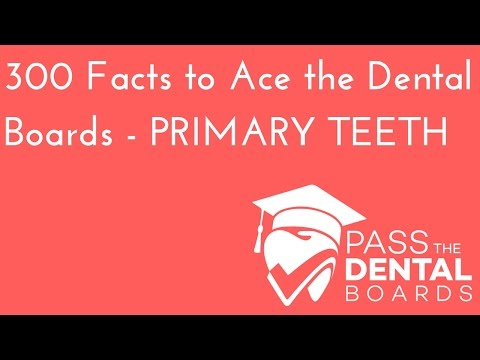 300 Dental Anatomy Facts PART 1- Primary/Deciduous Dentition - NBDE Part 1 Boards Study