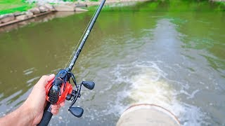 Searching for GIANT Summer BASS (Pond Fishing)