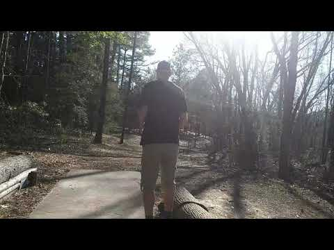 Disc Golf At Lindsey Park (blue Course) - Tyler, Texas