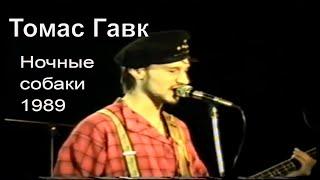 ТОМАС ГАВК - Ночные Собаки | 1989