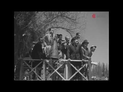 Regatas en Xochimilco, ca. 1936