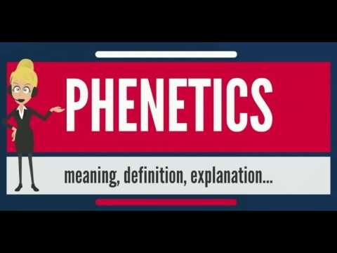 What is PHENETICS? What does PHENETICS mean? PHENETICS meaning, definition & explanation