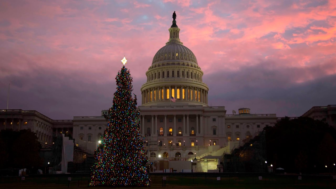 Capitol Christmas Tree.Lighting The 2016 Capitol Christmas Tree A Gift From Idaho Final