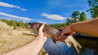 A Silent Fishing Trip in the High Desert