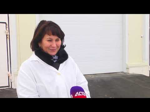 "Совхоз ""Корсаковский"" торжественно открыл молочно-товарную ферму"