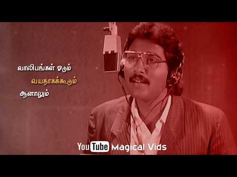 Kalyana Malai || Tamil Love Song || WhatsApp Status ||