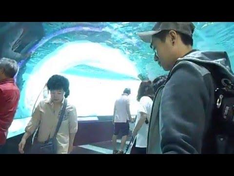 Inside Korea National Maritime Museum Busan