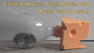 Catch A Mouse - Green Bottle USA Mouse Trap In Action. Full Review - mousetrapmonday