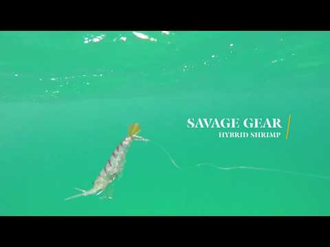 How Lures Swim: Savage Gear Hybrid Shrimp