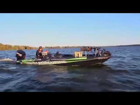 Harry Saul Minnow Farm - forage fish minnows, grow trophy