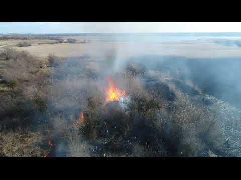 MYKOLAIV DSNS: Рятувальники ліквідували пожежу очерету