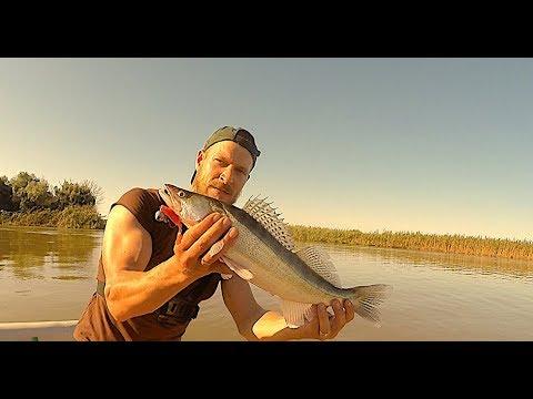 Рыбалка в Астрахани все это, будь то