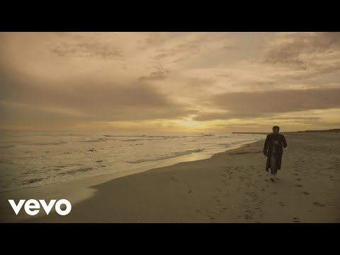 Laurent Voulzy - Belem (Clip officiel)