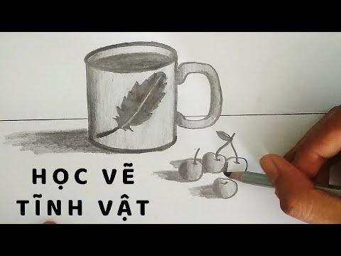 Vẽ Tĩnh Vật Cái Cốc và Quả bằng bút chì – How to draw a Coffee Cup
