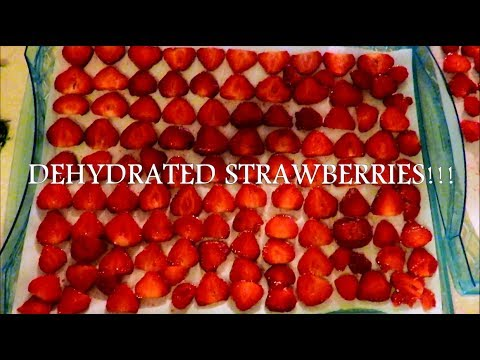 dehydrated-strawberries-dehydrator-review---keto-snacks---excalibur-dehydrator-dupe---low-carb-fruit