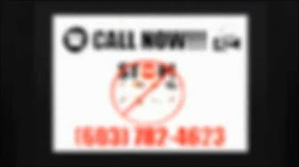 Bed Bug Exterminator Nashua NH | (603) 782-4623 | Bed Bugs Nashua NH | Emergency | Best