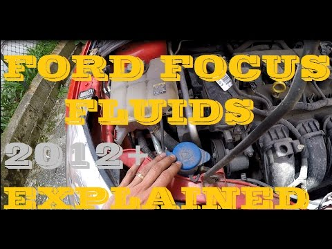 Ford Focus Fluid Maintenance 2012+