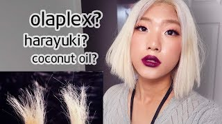 One of NamiiCho's most viewed videos: DEAD HAIR EXPERIMENT Olaplex VS Harayuki VS DIY Coconut Oil - WHICH IS THE BEST!!