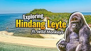 Exploring Hindang Leyte // The Home of 300 WILD MONKEYS in LEYTE