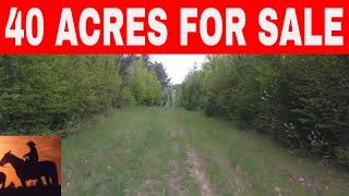 Binge Watch 40 Acres For Sale Or Nv Az